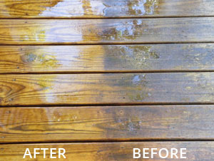 Stain Solver Deck cleaning