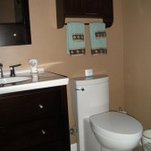 11-AFTER-ASB-Ugly-Bath-Darlene Wetzel-vanity-Toilet