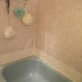 2-BEFORE-ASB-Ugly-Bath-Darlene Wetzel-bathtub
