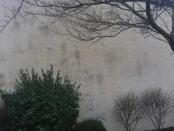 This stucco wall has to be cleaned and sealed before the final paint is applied. Photo Credit: Doug Prehm