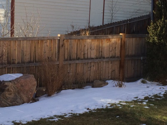 This appears to be a sturdy fence, but looks can be deceiving. You'd be stunned how much pressure a strong gust of wind can create on a solid fence. Photo Credit: Marcus Pennell