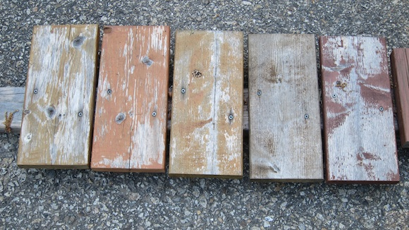 These are cedar wood samples. All of the stain products have now failed. Photo credit: Tim Carter