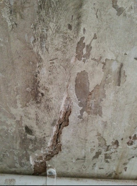 Mold On Plaster Walls Ask The Builder