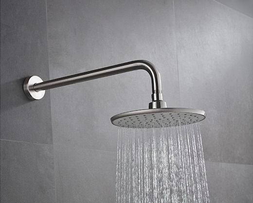 rainhead shower head