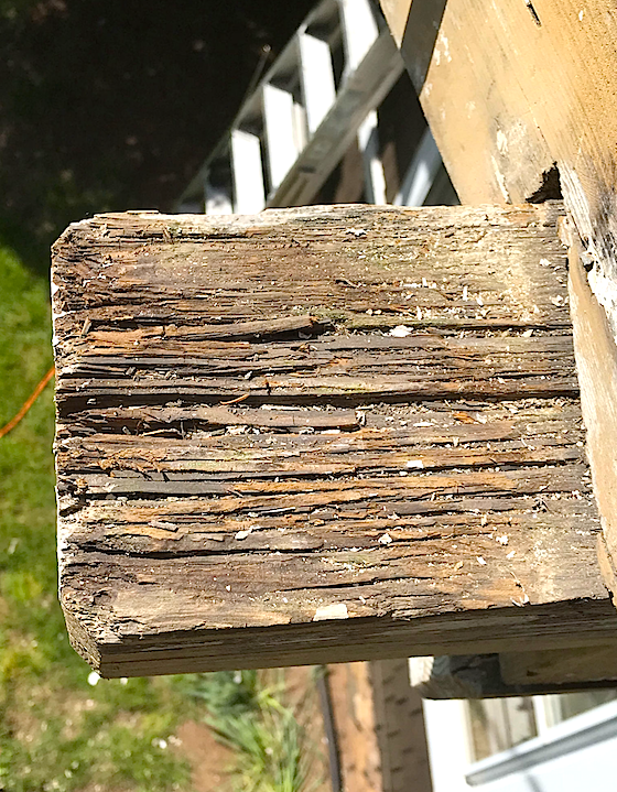 Wood Rot Repair is Easy | Use Wood Hardener & Epoxy