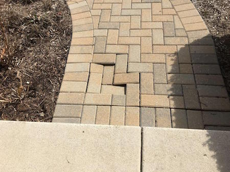 chipmunk paver tunnel