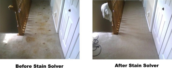 Stain Solver Cleans Carpet