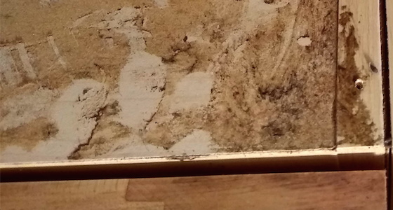 cabinet mold
