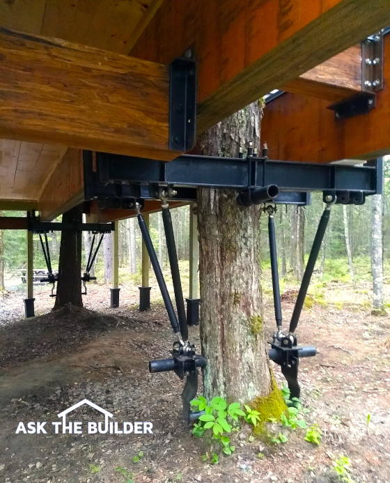 build a real tree house